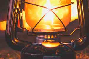 are fleas attracted to light or heat